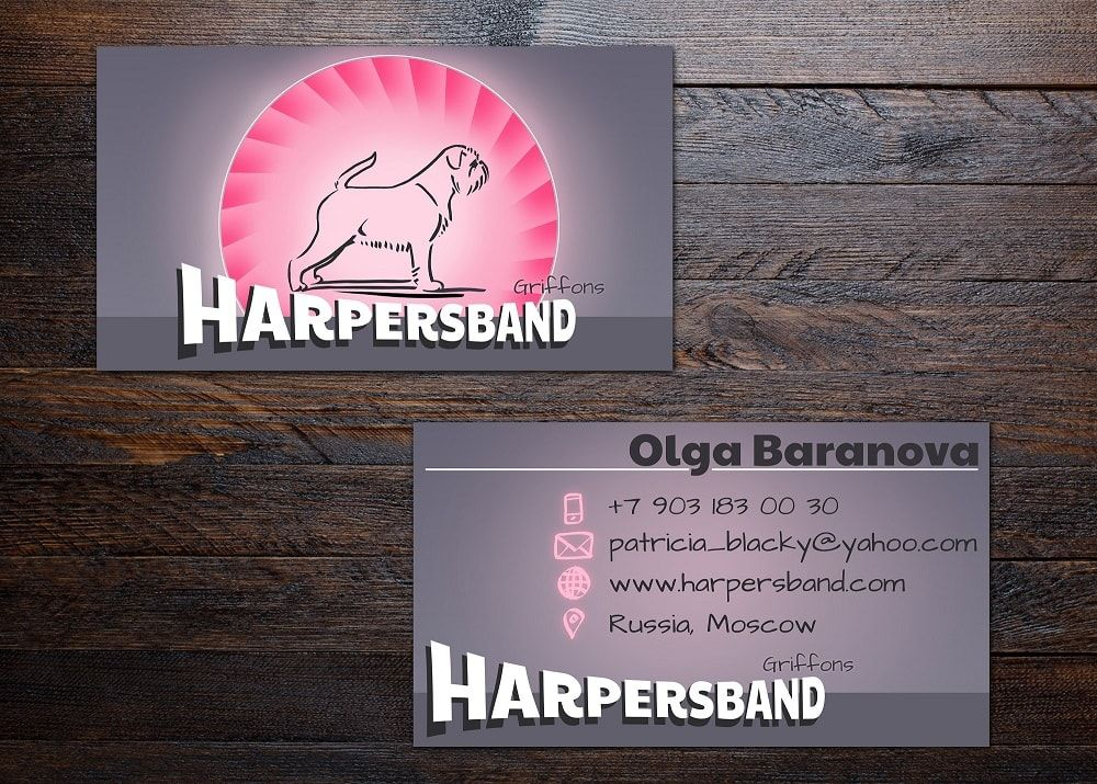NEW Harpersband